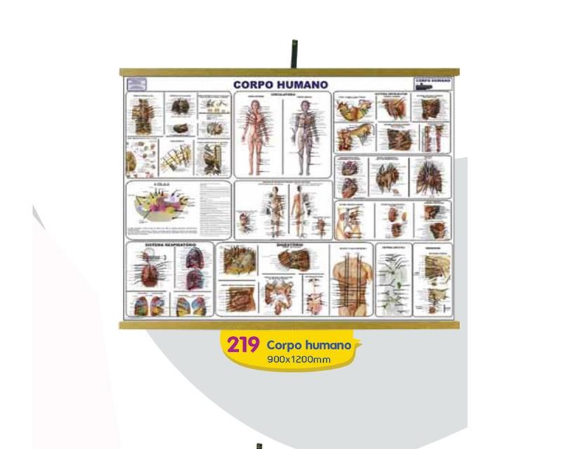 Corpo Humano - 900x1200mm